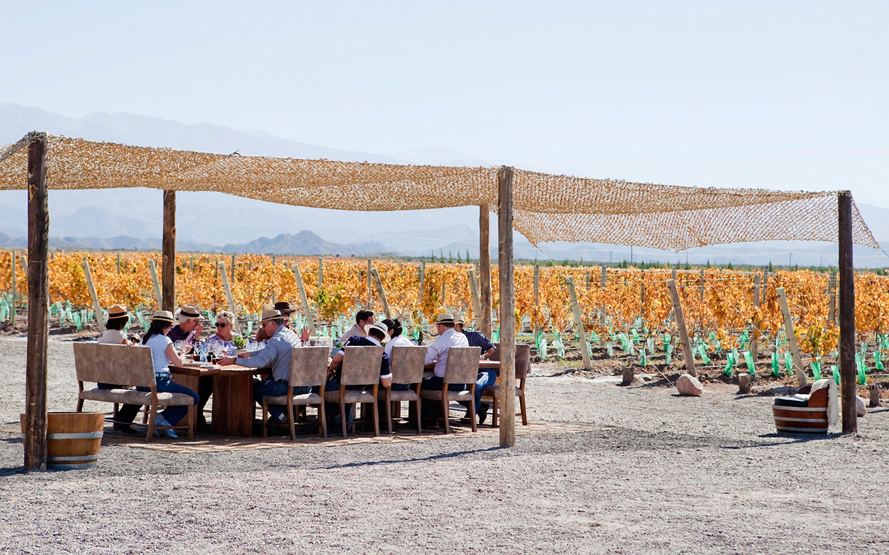 Celebre a Vendimia em Mendoza no Casa de Uco