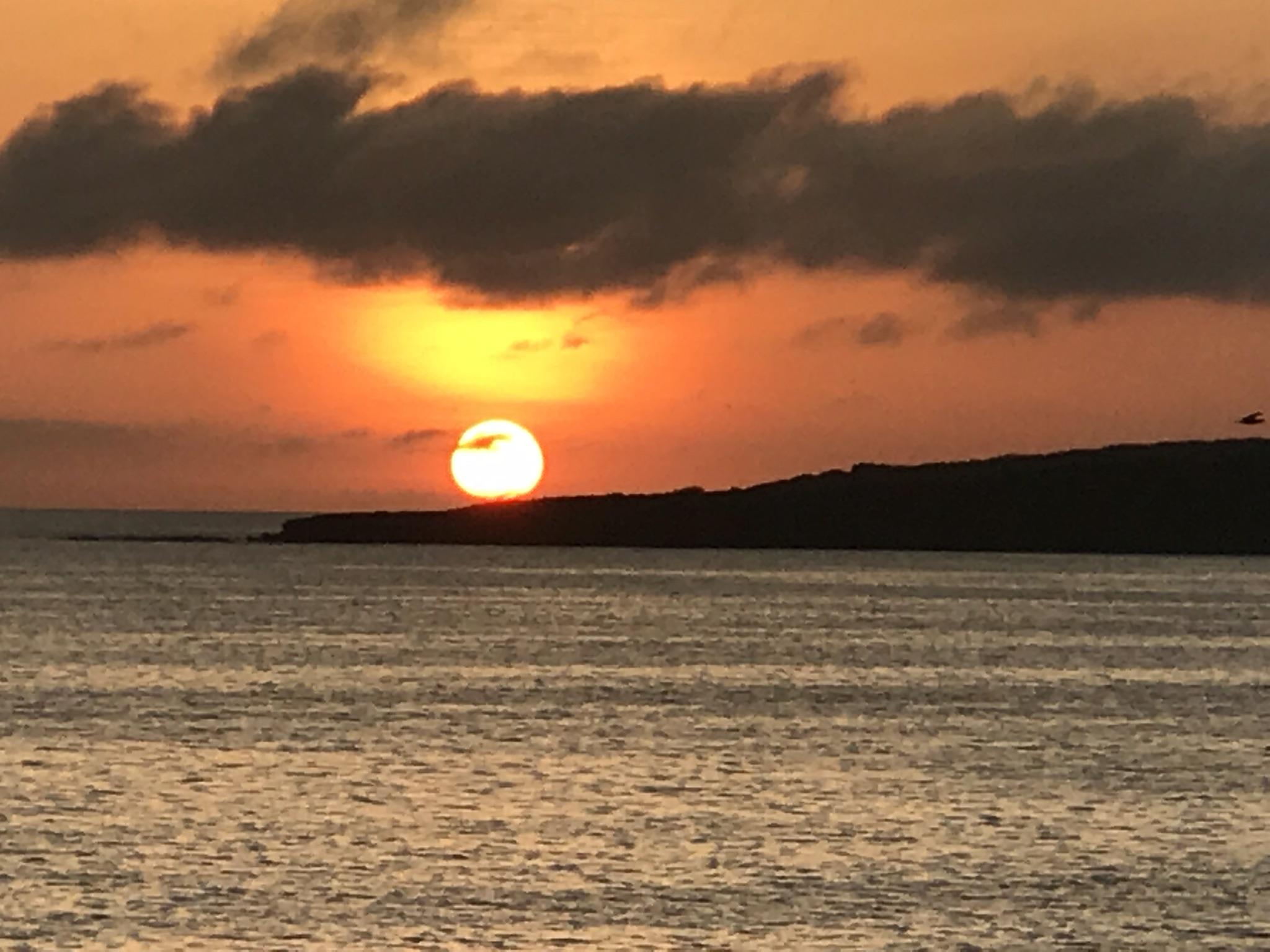 Galápagos, Aventura em Família