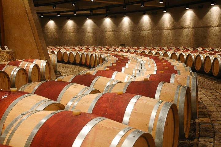Vinhos do Chile e Argentina