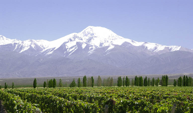 Vinhos do Chile e Argentina