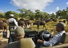 Descobrindo a África